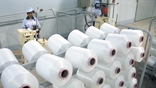 Cuộn sợi vải Cotton