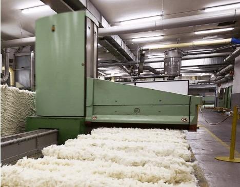 Khu vực xử lý để làm sợi Cotton