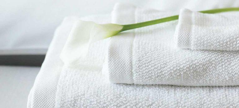 Khăn tắm cotton Thủ Đô